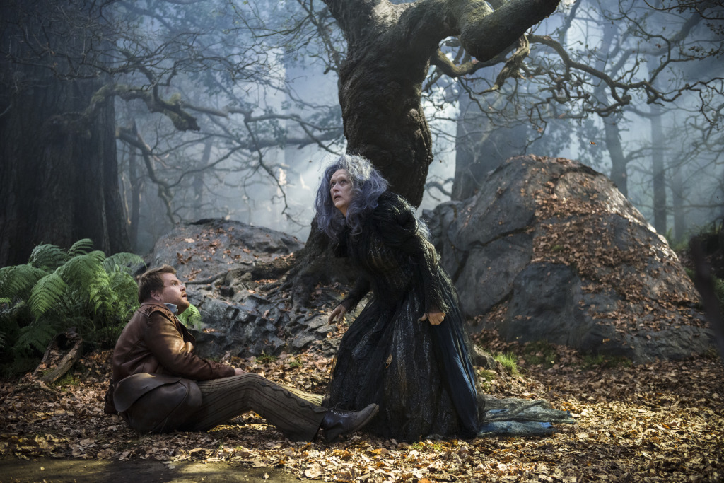 Disney Into The Woods Meryl Streep