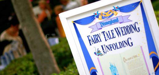 Disney Wedding In Progress Sign Disneyland