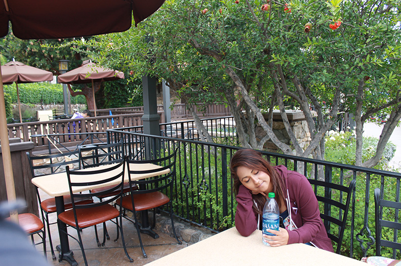 Sonoma Terrace Disney California Adventure Best Place To Nap