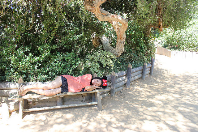 Best Places To Nap At Disneyland Tom Sawyers Island