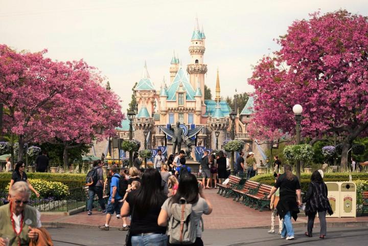 Disneyland Springtime 12