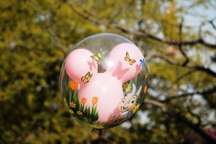 Disneyland Springtime 6