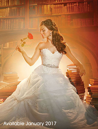 Belle beauty and the beast books library wedding dress for Beauty and the beast style wedding dress
